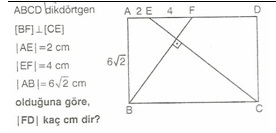 11.snf geometr dkdortgen testler 30