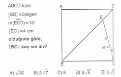 11.snf geometr kare testler 13