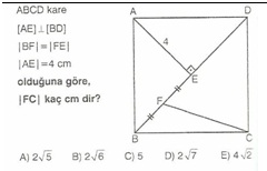 11.snf geometr kare testler 14
