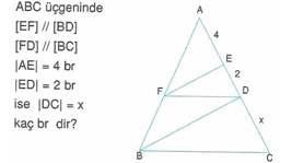 9-sınıf-geometri-benzerlik-ve-dik-ucgen-testleri-21.