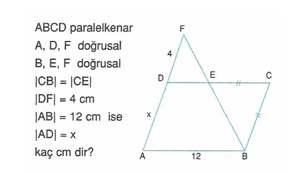 9-sınıf-geometri-benzerlik-ve-dik-ucgen-testleri-27.