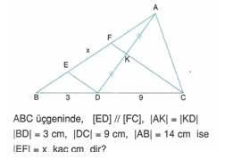 9-sınıf-geometri-benzerlik-ve-dik-ucgen-testleri-29.