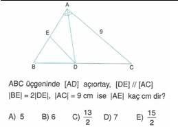 9-sınıf-geometri-benzerlik-ve-dik-ucgen-testleri-33.