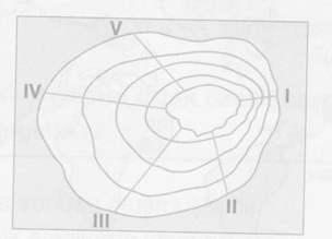 9.sinif-cografya-testler-53.