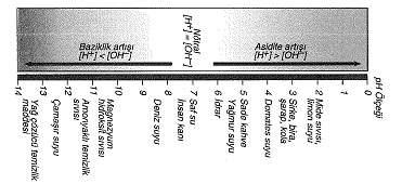 9-sinif-biyoloji-testleri-53.