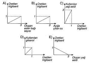 9-sinif-biyoloji-testleri-62.
