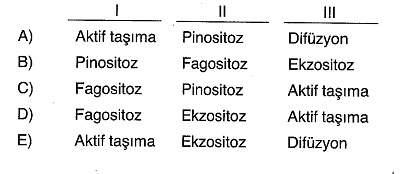 9-sinif-biyoloji-testleri-80.
