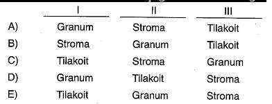 9-sinif-biyoloji-testleri-88.