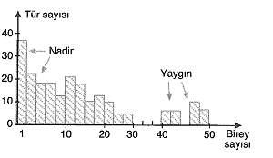 11.sinif-biyoloji-komunite-ve-populasyon-testleri-1.