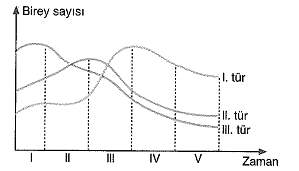11.sinif-biyoloji-komunite-ve-populasyon-testleri-4.