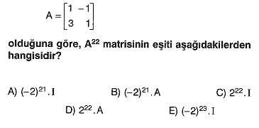 lys-matematik-matris-testleri-22.