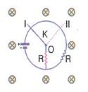 lys-fizik-madde-ozellikleri-testleri-571