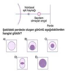 lys-fizik-madde-ozellikleri-testleri-657.