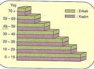 10-sinif-cografya-dunyayi-kaplayan-ortu-bitkiler-testleri-2-Optimized