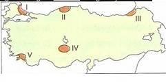10-sinif-cografya-turkiyede-toprak-tipleri-ve-toprak-kullanimi-testleri-2-Optimized