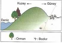 10-sinif-cografya-turkiyede-toprak-tipleri-ve-toprak-kullanimi-testleri-6-Optimized