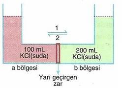 10.-sinif-kimyasal-karisimlar-testleri-12-Optimized
