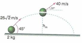 11.Sinif-fizik-hareket-ve-kuvvet-testleri-39
