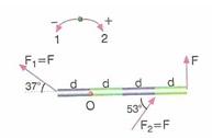 11.Sinif-fizik-hareket-ve-kuvvet-testleri-46
