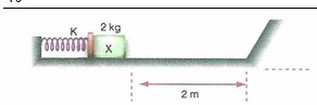 11.Sinif-fizik-hareket-ve-kuvvet-testleri-8