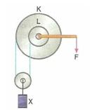 11.Sinif-fizik-hareket-ve-kuvvet-testleri-81