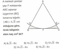 11.Sinif-geometri-dairede-alan-testleri-18-Optimized