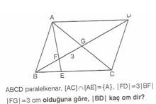 11.sinif-geometri-paralel-kener-testleri-13-Optimized