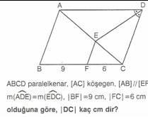 11.sinif-geometri-paralel-kener-testleri-25-Optimized