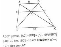 11.sinif-geometri-yamuk-testleri-8-Optimized
