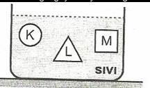 8.-Sinif-Fen-Ve-Teknoloji-Hareket-Ve-Kuvvet-Testleri-13-Optimized
