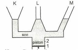 8.-Sinif-Fen-Ve-Teknoloji-Hareket-Ve-Kuvvet-Testleri-33-Optimized