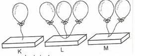 8.-Sinif-Fen-Ve-Teknoloji-Hareket-Ve-Kuvvet-Testleri-6-Optimized