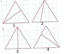 8.Sinif-Matematik-Ucgenler-Testleri-32-Optimized