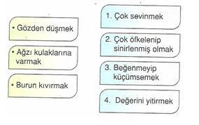 6.-Sinif-Turkce-sozcukte-anlam-testleri-14