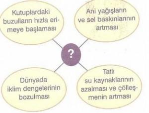sosyal-bilgiler-ulkeler-arasi-kopruler-testleri-5