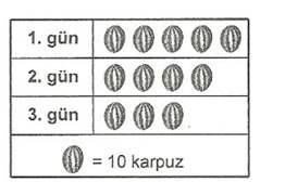 6.sinif-matematik-arastirma-sorusu-olusturma-ve-veri-olusturma-testleri-41.