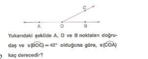 6-sinif-matematik-acilar-testi-çöz-38.