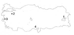RESİM-8