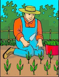 Farmer_12
