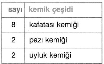 jjk 241