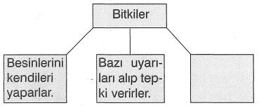 jjk 154