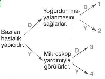 jjk 159