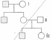 8-sinif-fen-bilimleri-kalitim-test-6