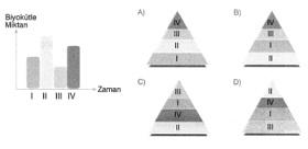 8-sinif-fen-bilimleri-canlilar-ve-enerji-2