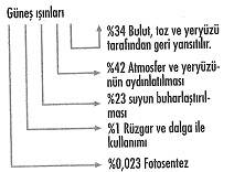 8-sinif-fen-bilimleri-canlilar-ve-enerji-37-optimized