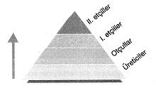 8-sinif-fen-bilimleri-canlilar-ve-enerji-4