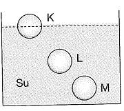 8-sinif-fen-bilimleri-deneme-sinavi-146