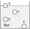 8-sinif-fen-bilimleri-deneme-sinavi-2