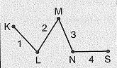 8-sinif-fen-bilimleri-deneme-sinavi-29