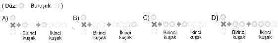 8-sinif-fen-bilimleri-hucre-bolunmesi-ve-kalitim-cozumlu-5-optimized
